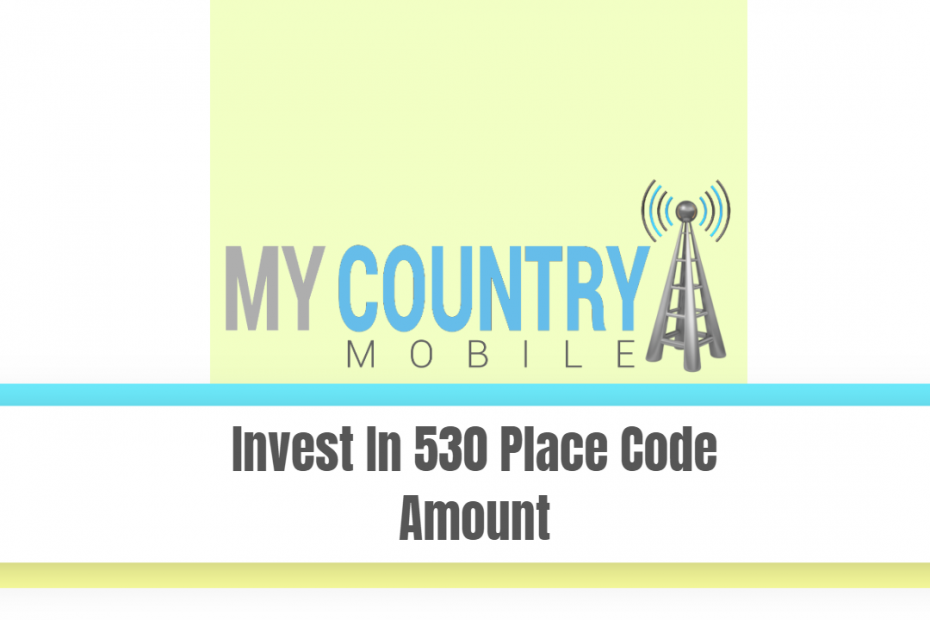 Invest In 530 Place Code Amount - My Country Mobile